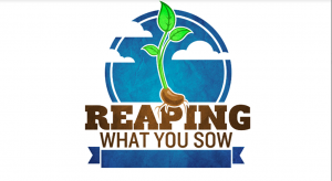 Reaping What You Sow: The Right Perspective