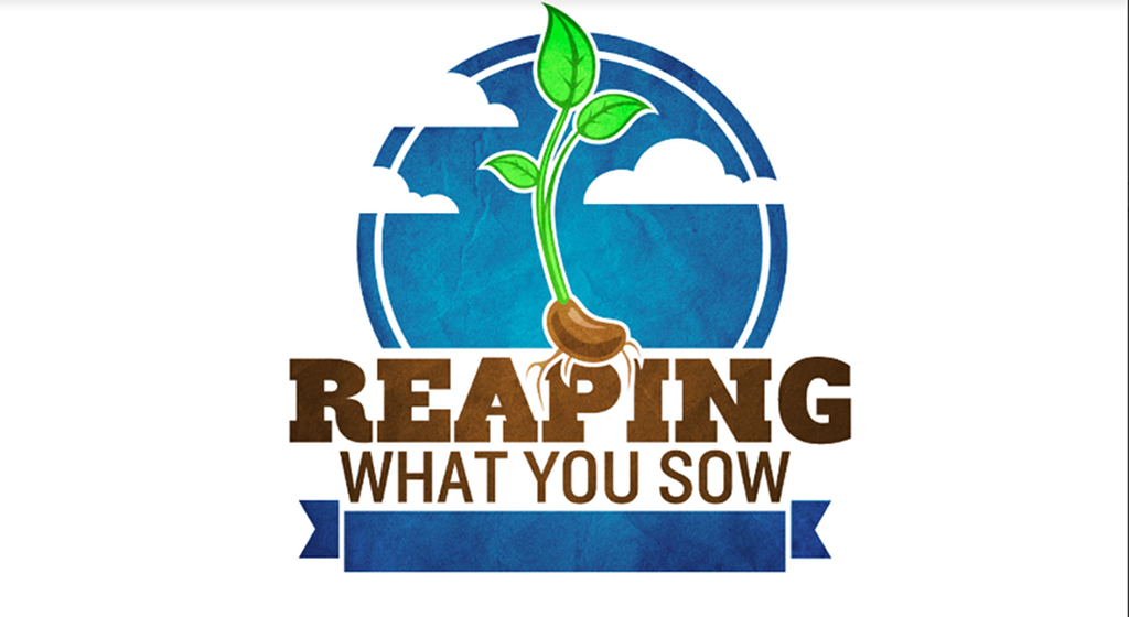 Sowing & Reaping: Planting Trees