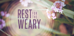 Read more about the article Jesus and Rest